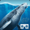 Sea World VR2